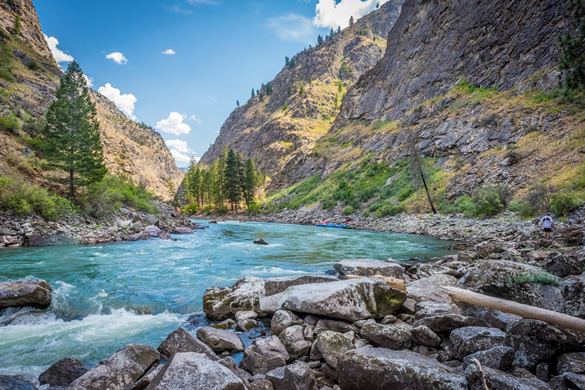 The Free Flowing Middle Fork of the Salmon River in Idaho